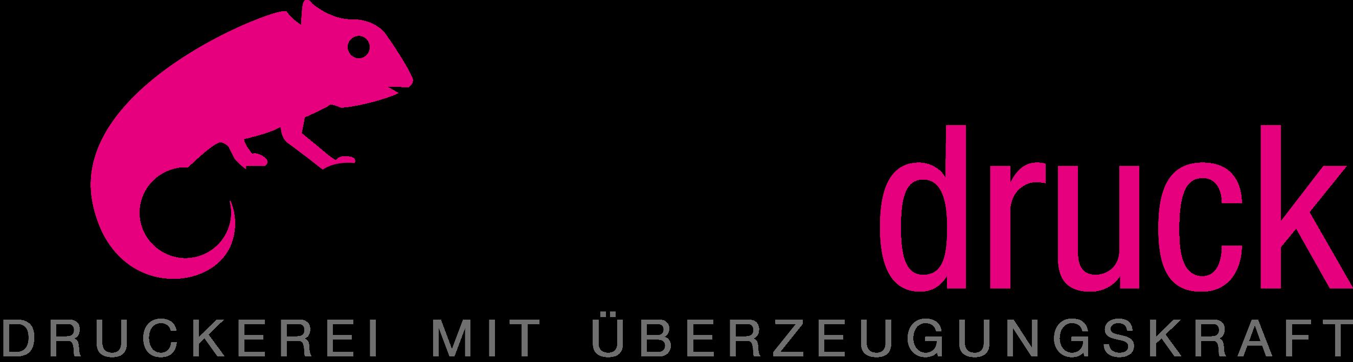 Vorsmann Druck & Verlag GmbH